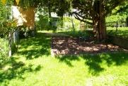 Kletterbaum im Garten